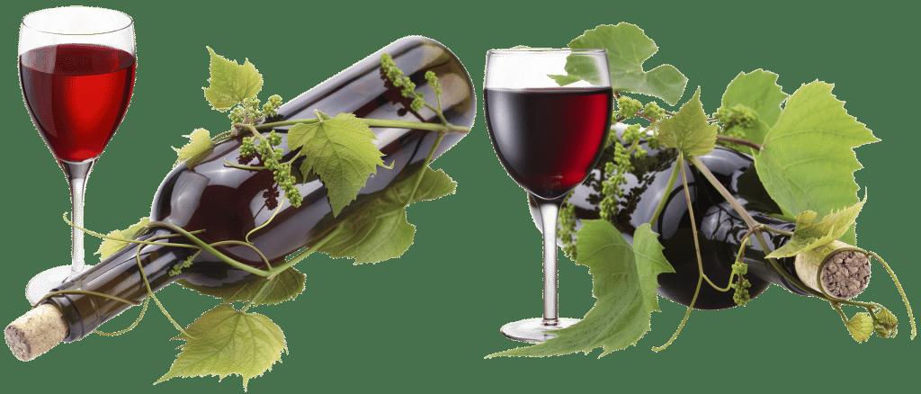 Un vin bio en supermarché